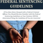 Understanding the Federal Sentencing Guidelines